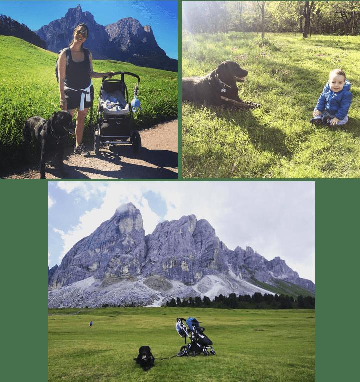 Viaggiare con cani e bimbi, i consigli dell'educatore cinofilo