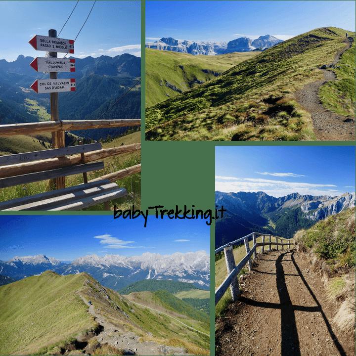 Val Jumela, incanto verde per bambini in Val di Fassa