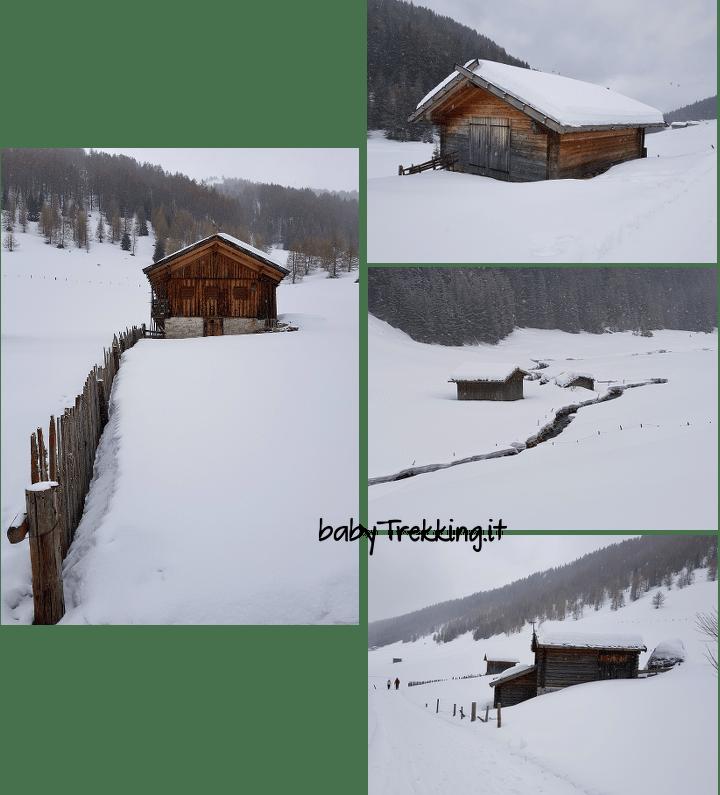 Valle di Altafossa con le ciaspole, camminare nella neve in Val Pusteria