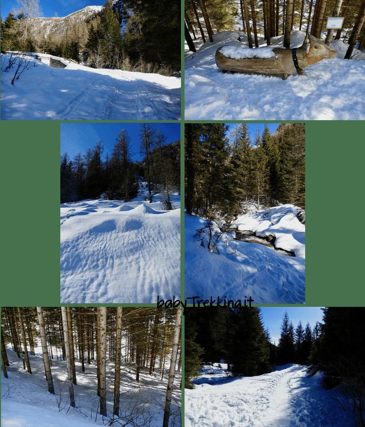 Malga Fane con le ciaspole, bianco incanto in Val Pusteria