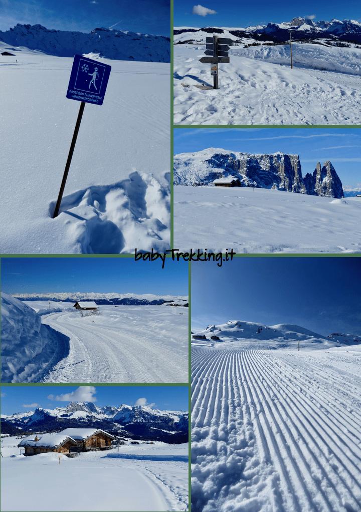 Con le ciaspole al Rifugio Molignon, in inverno sull'Alpe di Siusi