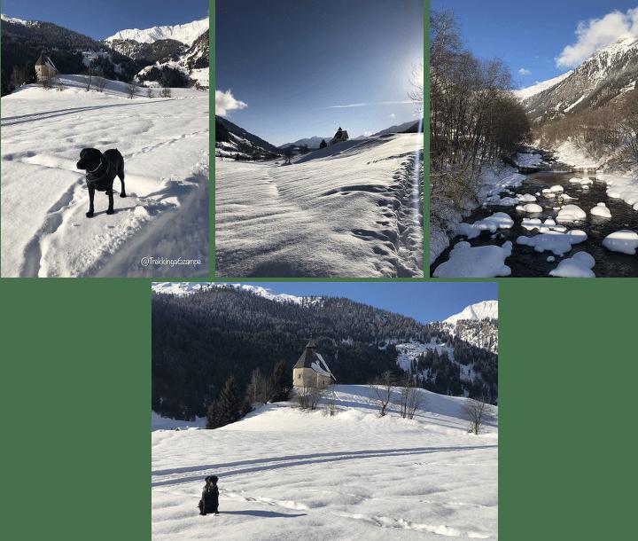 Giro della Val Ridanna, anello panoramico immersi nella neve