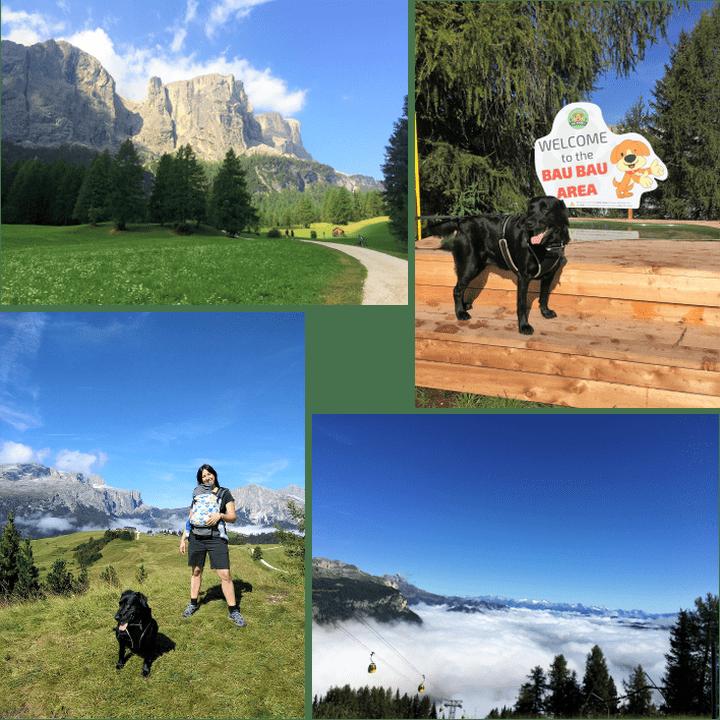 Alta Badia a 6 zampe: le 5 passeggiate da non perdere