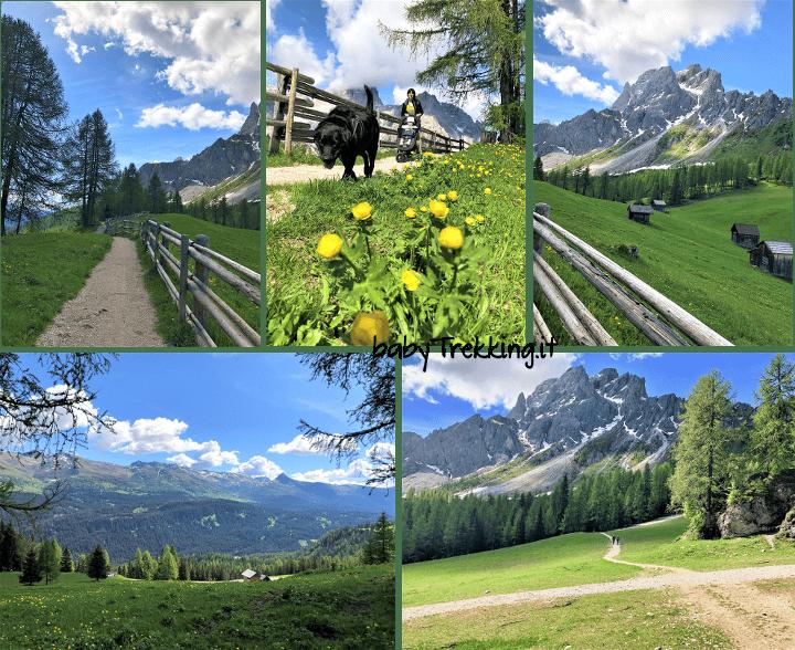 Prati di Croda Rossa: col passeggino ai piedi delle Dolomiti di Sesto