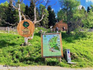 Alta Pusteria per bambini: Parco Olperl, a piedi nudi sul Monte Elmo